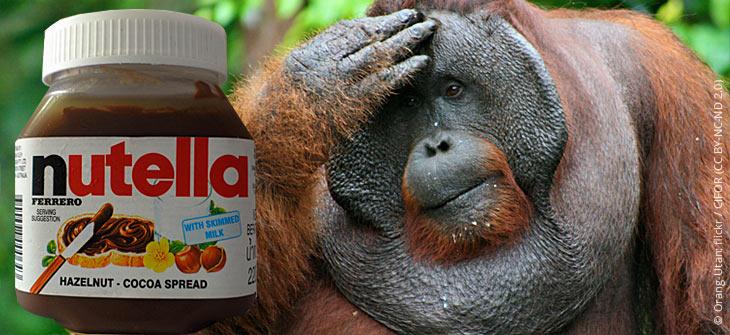 Konsum von Palmöl zerstört Regenwälder